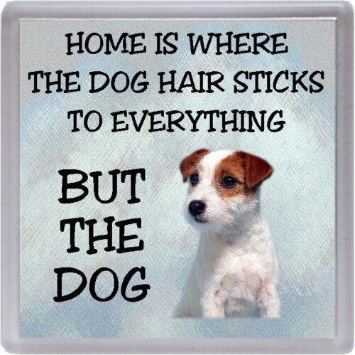 "Jack Russell Terrier Coaster /""Home is Where the Dog Hair Sticks ../"" by Starprint"