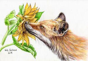 Fox-And-Sunflower-original-watercolor-pencils-animal-drawing-pet-dog-fox-vixen