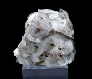 224-4g-Natural-rare-fish-scaly-calcite-amp-7colored-pyrite-mineral-specimen-China