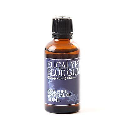 Eucalyptus Blue Gum Essential Oil - 100% Pure - 50ml (EO50EUCABLUEGUM)