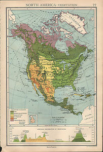 Details about 1936 MAP ~ NORTH AMERICA VEGETATION FOREST CULTIVATION UNITED  STATES MEXICO