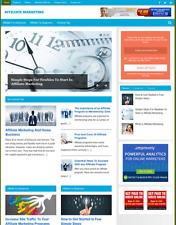 Affiliate Marketing Fully Featured Niche Website For Sale Newbie Friendly