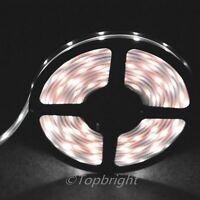 5m Cool White SMD 3528 Waterproof Flexible LED Strip