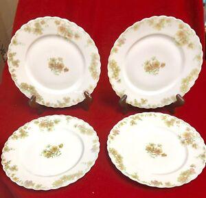 "Details about Haviland Porcelain THE COUNTESS PATTERN Set (4) 9 5""Dinner  Plates LIMOGES FRANCE"