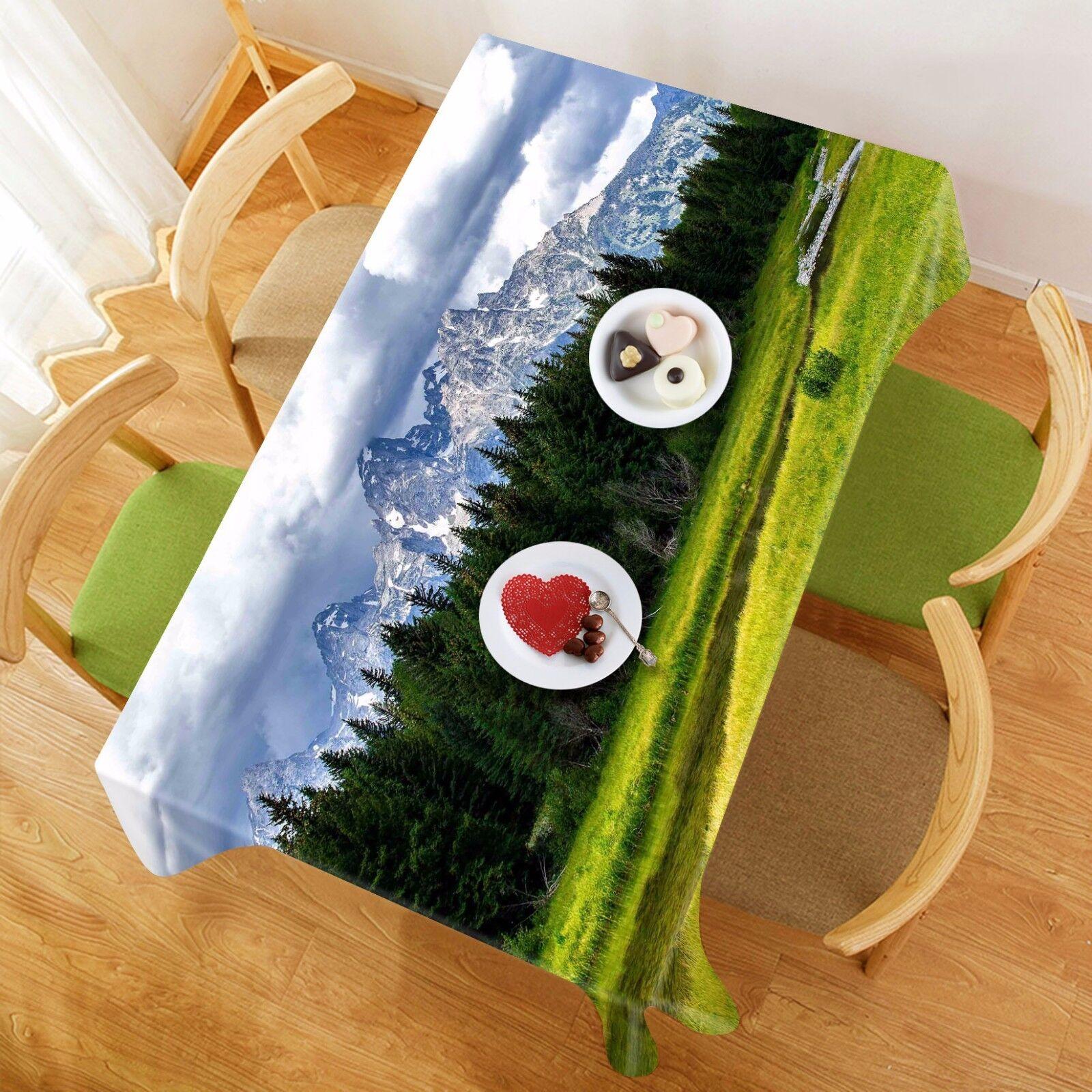3D Ciel Pelouse 94 Nappe Table Cover Cloth Fête D'Anniversaire événement AJ papier peint UK