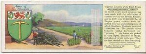 Tobacco-Plantation-Southern-Rhodesia-Africa-Field-c80-Y-O-Trade-Ad-Card