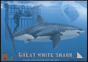 Pegasus-Hobbies-Great-White-Shark-Model-Kit-PG9501-Brand-New-Plastic-Model-Kit
