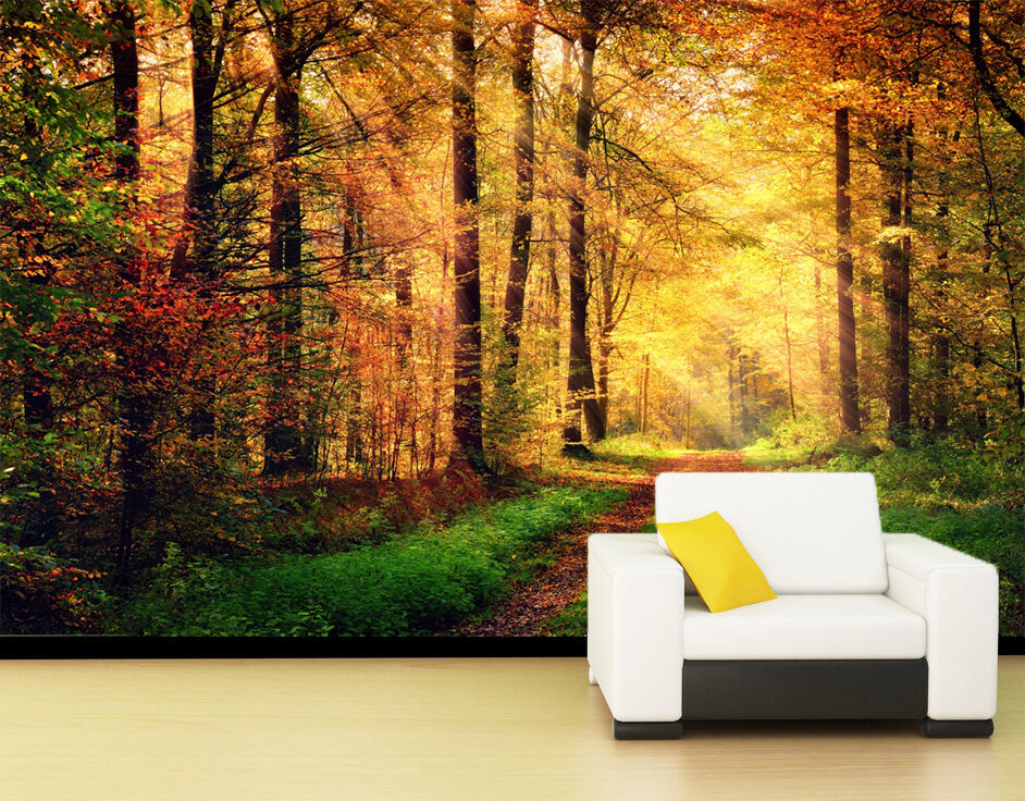 3D forest sunlight Morning Wall Paper Print Decal Wall Deco Indoor wall Mural
