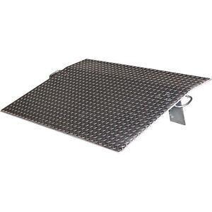 Vestil-Economizer-Dockplate-Aluminum-4600-lb-Cap-30inL-x-60inW-E-6030