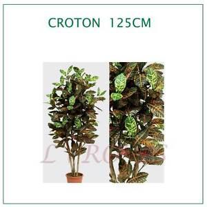 Piante Finte Da Appartamento.Croton 125cm Piante Artificiali Piante Finte Da Appartamento Ebay