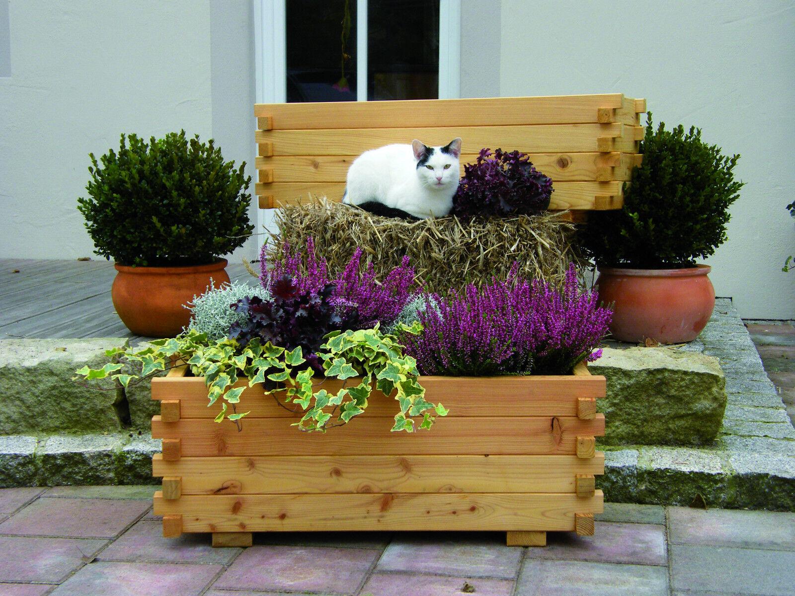 VERONIKA Pflanzkasten aus Lärchenholz Blaumenkasten - 4 Größen