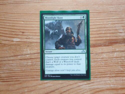 MOONLIGHT HUNT X4 Shadows Over Innistrad SOI Magic MTG MINT CARD