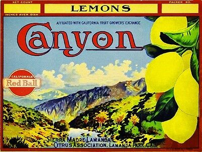 Sierra Madre LaManda Park Canyon Lemon Citrus Fruit Crate Label Art Print