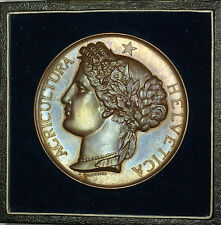 1887 Neuchatel Switzerland Agricultural Medal Beautifully Toned Original Case