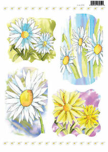 Daisies Craft UK Colour Your Own Die Cut Toppers Line 2086