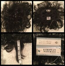 NEW! European Naturals Pull-Thru Hairpiece Wiglet BLACK NEW! FREE SHIP USA(F-50)