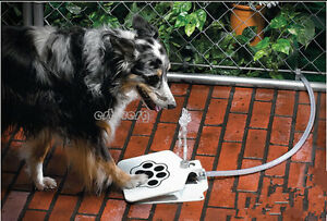 Step & Spray Dog Cat Paw Water Drinking Fountain Dish Spring Pedal Training