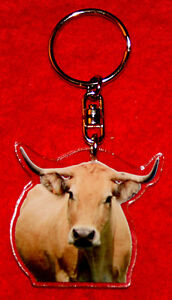 porte-cles-vache-12-aubrac-animals-keychain-llavero-animales-schlusselring
