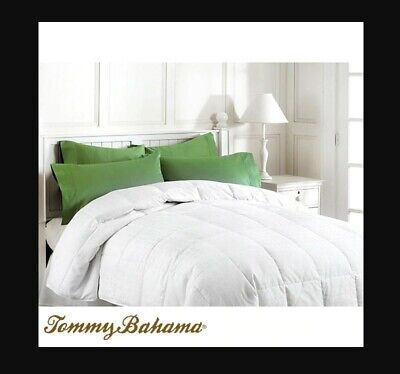 Tommy Bahama Rolled Down Alternative Jumbo Size Pillow Standard//Queen