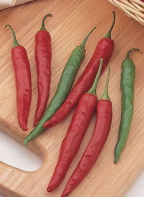 Populair Merk Vegetable - Pepper (chilli) - Chiang Rai - 5 Seeds - Economy