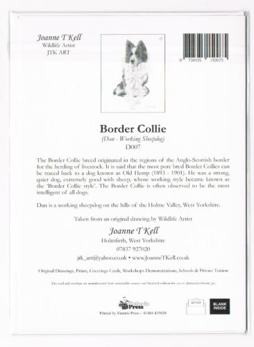 BORDER COLLIE SHEEPDOG GREETING CARD From Original Drawing By Joanne T Kell
