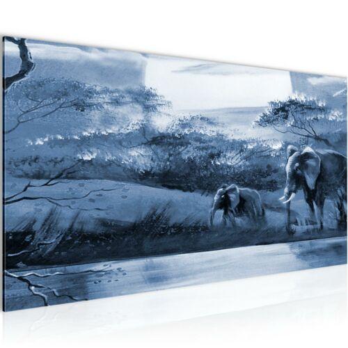 Murales imágenes XXL África malla elefeant imagen del lienzo son impresiones artísticas 000412p