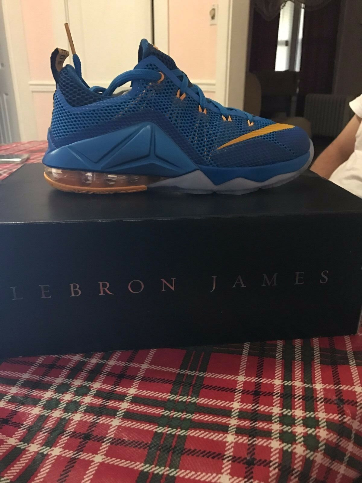 lebron XII low (GS)  Cheap and fashionable