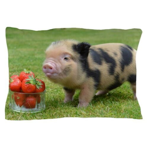 1189813723 CafePress Little Micro Pig With Strawberries Pillow Case