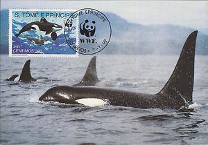 Complete-Set-4-maxicards-Sao-Tome-amp-Principe-1992-Marine-Life-Whale-WWF-maximum