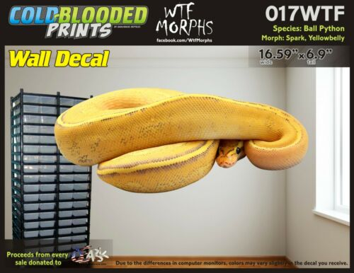 Removeable Wall Decal Snake Ball Python Cold Blooded Prints Sticker 017WTF