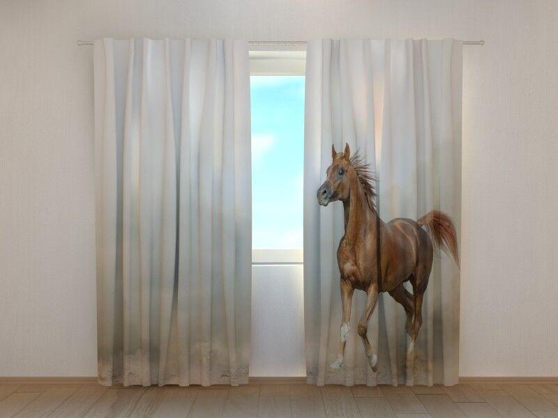 Fotogardine anmutiges Pferd, Vorhang Vorhang Vorhang mit Foto, Fotovorhang, Fensterdeko, auf Maß dcf21a