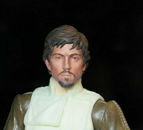 PAINTED HEAD ONLY Star Wars Black Series 6 inch Custom Casian Rogue One