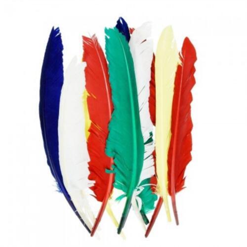 10 Indianerfedern FEDERN 20-30 cm BUNT sortiert EFCO Karneval Fasching 10044