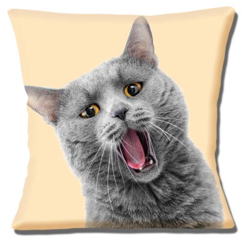 Funny Grey Cat housse de coussin 16x16 pouces 40 cm Amber Eyes imprimé photo sur crème