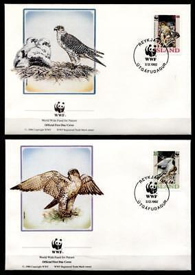 FleißIg Wwf Greifvögel. Gerfalke. 4 Fdc. Island 1992 Moderne Techniken