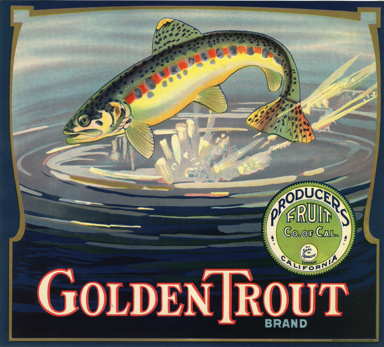 orange  CRATE LABEL goldEN TROUT VINTAGE FISHING TULARE BASS VERY SCARCE GENUINE  for cheap