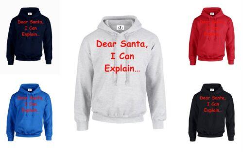 Explain Dear Santa I Can Explain Gift Merry Christmas disorder HOODIE JUMPER