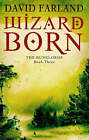 Wizardborn by David Farland (Paperback, 2007)