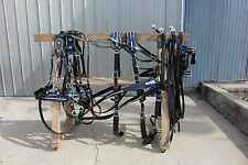 Amish made beta - biothane draft horse team show harness BLUE DECORATION