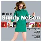 The Beat Of von Sandy Nelson (2016)