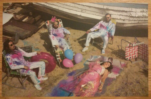 Music Poster Promo Silversun Pickups ~ Better Nature 2 Double Sided Ver