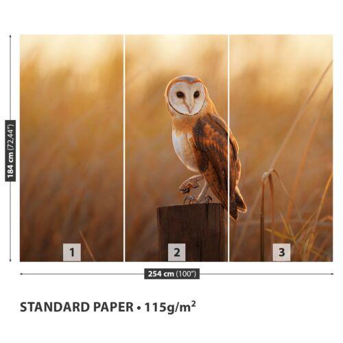 Papier-Fototapete Fototapeten Tapete aus Papier Poster Foto Schleiereule Vogel