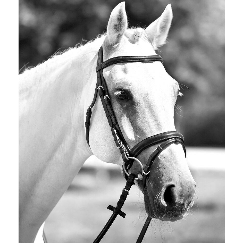 English Bridle Leather and leather padded full reins
