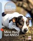 Mein Hund hat Angst von Petra Krivy und Udo Ganslosser (2016, Taschenbuch)