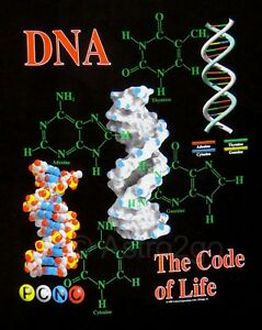 Details about DNA-THE CODE OF LIFE--Genetics Chromosomes Helix Biology  Science T shirt S-4XL