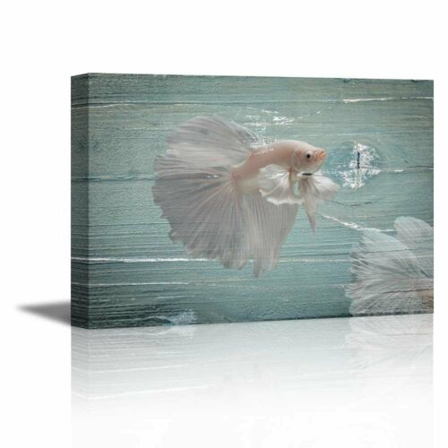 """16/"""" x 24/"""" White Golden Fish on Vintage Wood Background Canvas Prints Wall Art"""