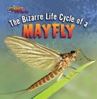 The Bizarre Life Cycle of a Mayfly by Greg Roza (Paperback / softback, 2012)