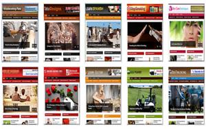 275-Ready-made-Wordpress-Website-039-s
