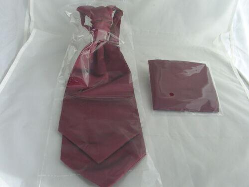 /> Burgundy Wine MENS Scrunchie Ruche Polyester Tie-Cravat and Hankie Set 003