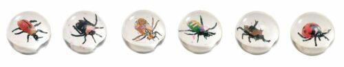 Spielzeug für draußen Flummybälle Käfer